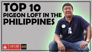 TOP 10 PIGEON LOFT IN THE PHILIPPINES
