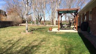 2539 Dotsero Ct. Loveland Colorado - home for sale