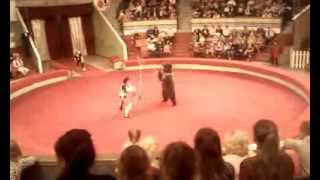 Медведь гигант в Пермском цирке