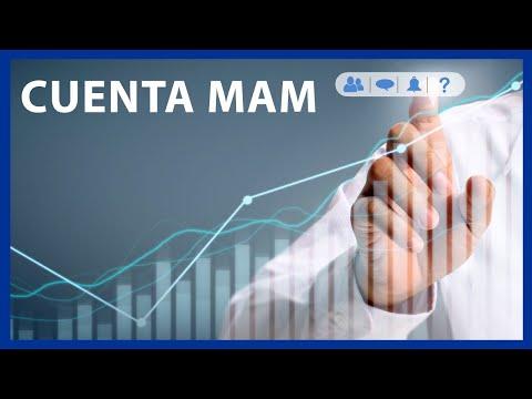 ¿Que son las Cuentas MAM? | QuantGemFX Animado