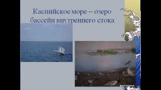 видео Какие моря и океаны омывают Россию?
