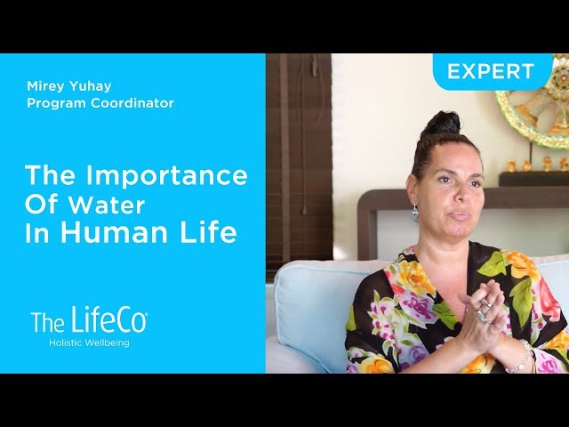 The Importance Of Water In Human Life