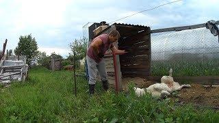 Бурение ям под забор // Забор своими руками // Жизнь в деревне