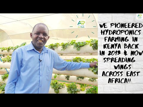 My Journey in Hydroponics - Hydroponics Africa