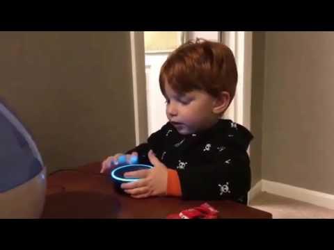 Kid Asking Alexa To Play Digger Digger