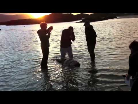 Rend Collective - The Making of Second Chance