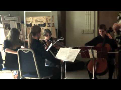Music Academy of WNC Premier String Quartet - April 3, 2014 Performance