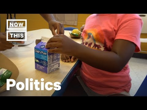Trump Administration Sued Over School Lunches | NowThis