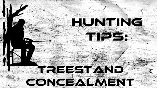 Hunting Tips: Treestand Concealment