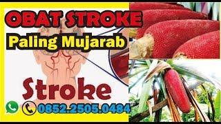 Obat Stroke Alami   Minyak Buah Merah Papua