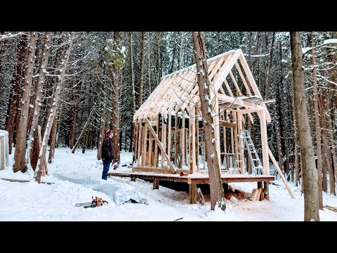 CABIN in the WOODS Build! | HAND Digging & Setting Foundation Ep1