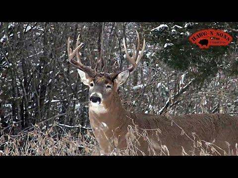 Hunting December 25 Deer Whitetails Late Season Snow Big ...