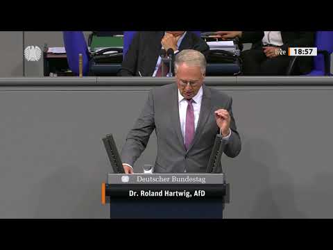 Dr. Roland Hartwig - Rede vom 09.09.2020 - China-Politik der EU