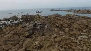 Brignogan-Plages : Plage du phare