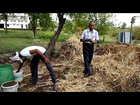NCOF-Waste Decomposer :Straw Decomposiing -Laxmikant Padole, Director, Neem Foundation,9822695411