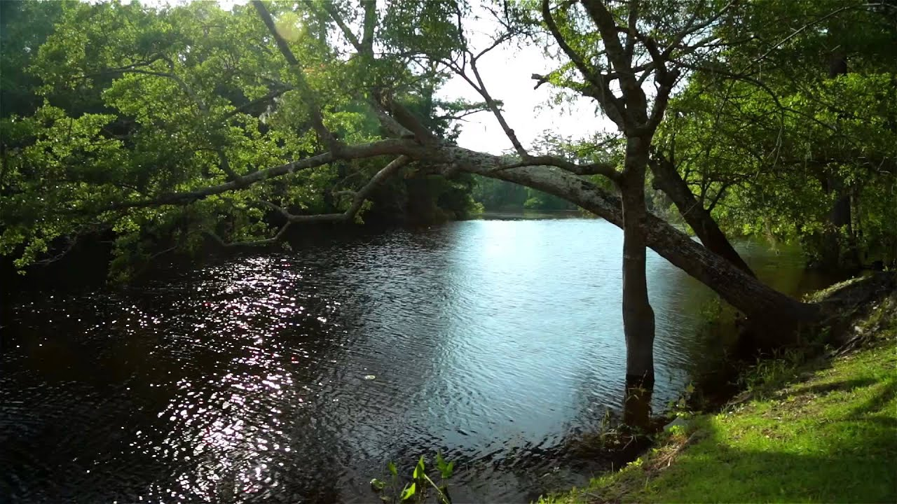 256051db22f8 Brunswick Forest – Coastal By Nature