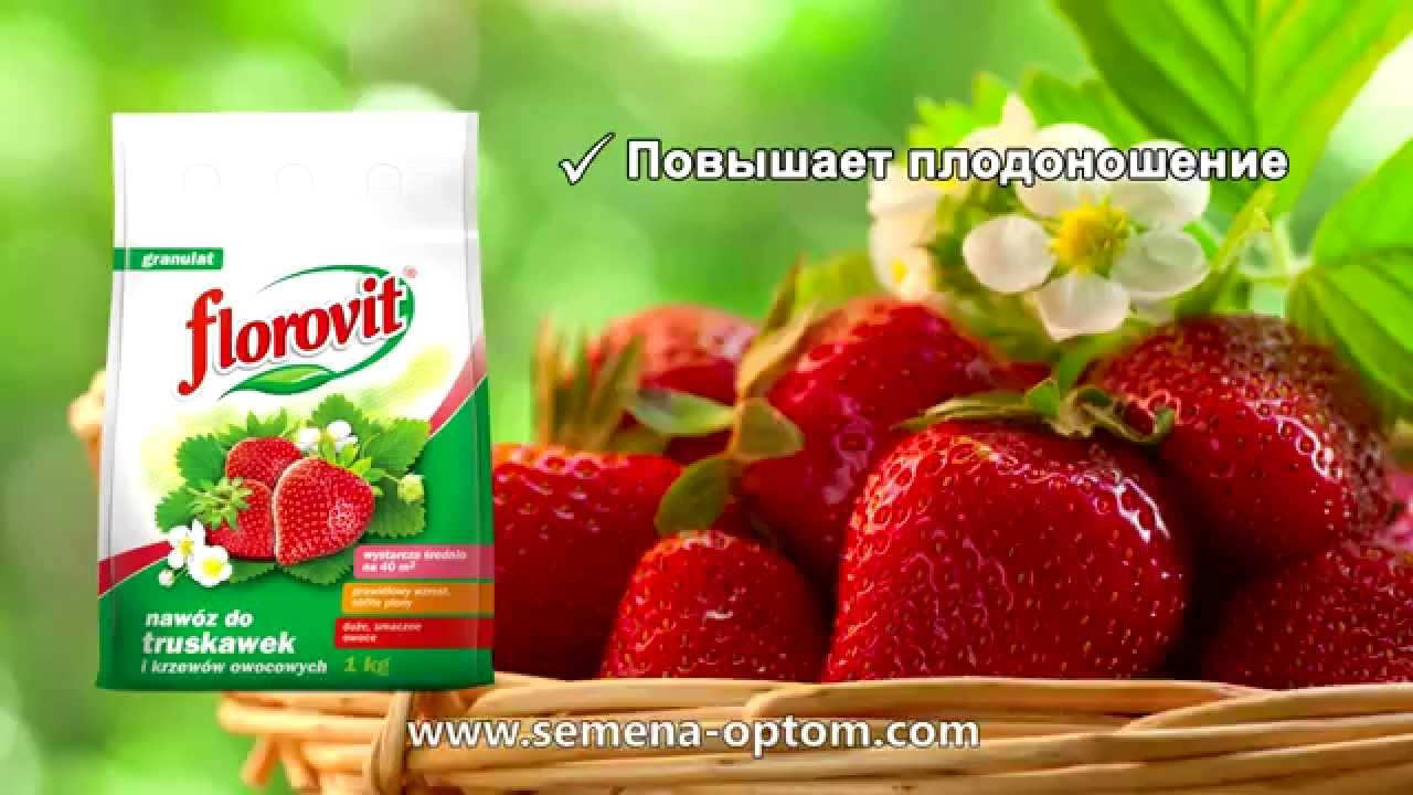Регуляторы и стимуляторы роста для клубники купить для увеличения урожая. Качественные препараты для удобрения клубники в украине от.