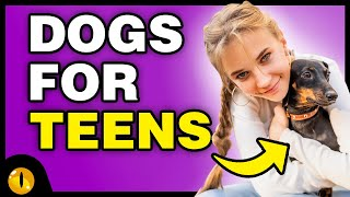 TOP 10 DOG BREEDS FOR TEENS
