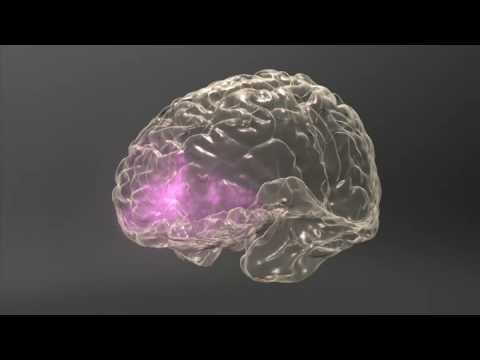 Meth  Inside Out: Brain & Behavior - Triggers