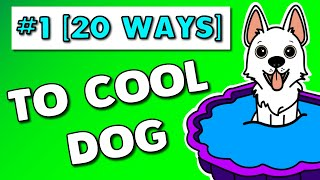 20 Ways On How To Keep Your Dog Cool (Survive Hot Summer Weather) [Part 1].