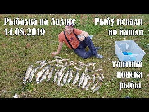 Рыбалка на Ладоге 14.08.19. Рыбу пришлось поискать, но нашли. Тактика поиска рыбы