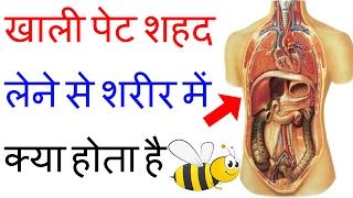 जानें सुबह खाली पेट शहद लेने से शरीर में क्या होता है | Health Benefits Of Honey On Empty Stomach
