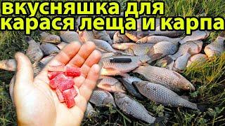 ШОК Насадка Лето Осень на Карася и Карпа самоделки для рыбалки прикормка