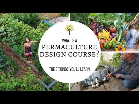 What Is a Permaculture Design Course?