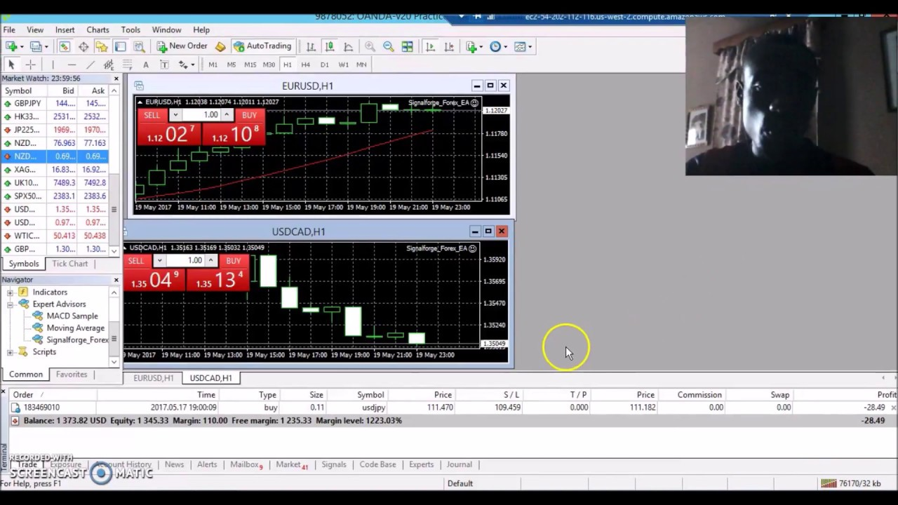 How Connect Signal Forge Auto Trader To Mt4 For Auto Trading Youtube