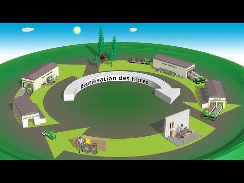 Animation 3d didactique cycle du papier réalisée en collaboration avec l'agence ComNext