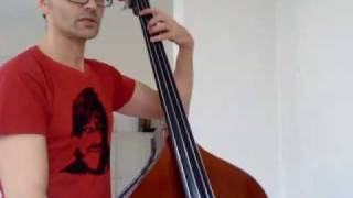 Learning to playing in tune on a double bass