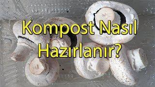 Kültür Mantarı İçin Kompost Nasıl Hazırlanır