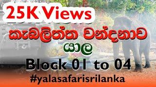 Yala Safari (Block 01 to 04)