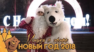 НОВЫЙ ГОД 2018 | Мишка в эфире
