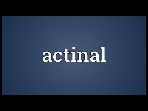 Header of actinal