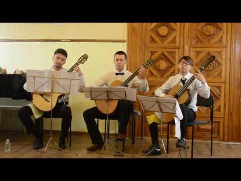 Filippo Gragnani  Trio for three guitars op 12  Allegro