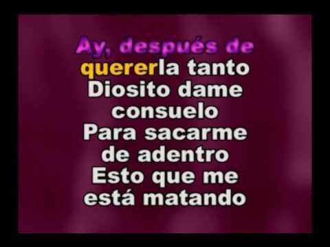ALEJANDRO FERNANDEZ - COMO QUIEN PIERDE UNA ESTRELLA - KARAOKE