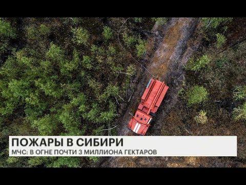 Пожары в Сибири 2019: Актуальные новости. Последние новости о пожарах в Красноярском крае.