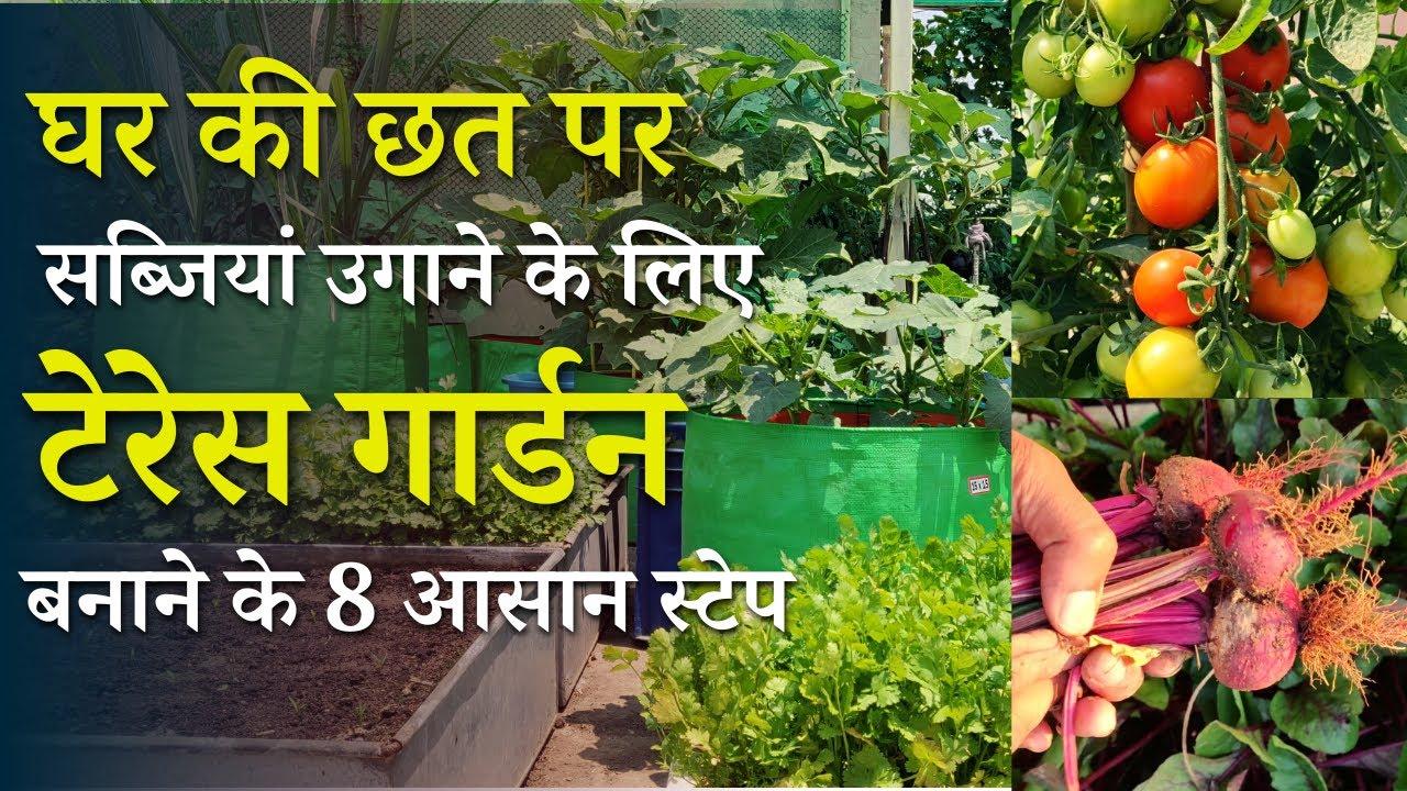 Download वेजिटेबल टेरेस गार्डन बनाने के 8 आसान स्टेप | How To Make Your Own Terrace Vegetable Garden In Hindi