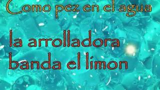Play Como Pez En El Agua