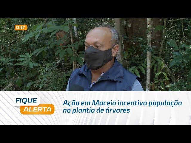 Dia da Árvore: Ação em Maceió incentiva população no plantio de árvores