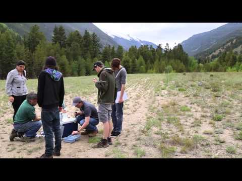 Chemistry and Geochemistry Field Session: Environmental Chemistry Module