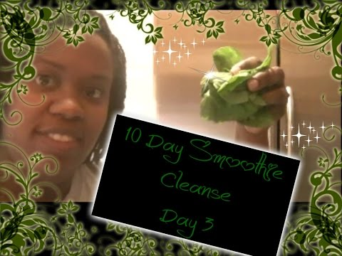 19  -jj-smith's-10-day-green-smoothie-cleanse-day-3