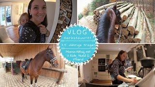 Herbst-Ausritt |4-Jährige tragen |Mama Alltag mit 3 Kindern, Hund & Pferd |Kathis Daily Life