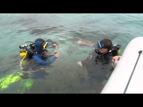 Baptême de plongée sous-marine au Cap Blanc, Oran, Algérie