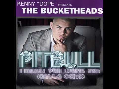 The Bucketheads vs Pitbull - The Bomb wants me (Marshall T. Bootleg)