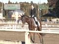 ムーパル・オリンピッククラブアワー日本の馬と人、歌とのトゥルーストーリィー第三回