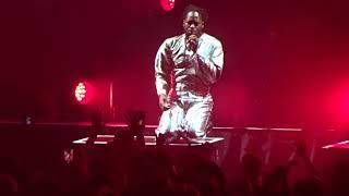 Gorillaz - Sex Murder Party - live - The Forum - Los Angeles CA - October 5, 2017