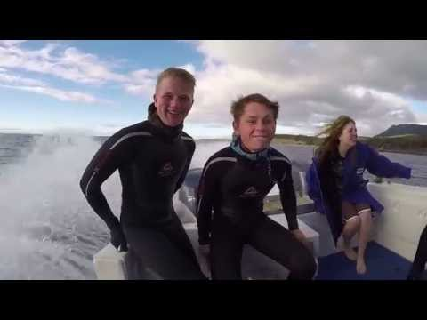 Experience a week as a marine biologist