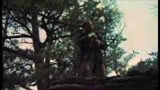 Deliverance Theatrical Trailer